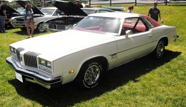 1977 Cutlass S  Dakotan Special