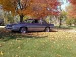 1985 Olds Cutlass 442 w/Hurst options