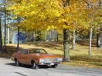 1971 Olds Cutlass S